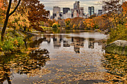 Skylines Metal Prints - Central Park in the Fall New York City Metal Print by Sabine Jacobs