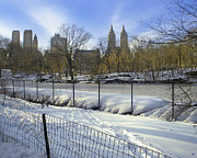 Crooked Fence Framed Prints - Central Park in Winter 2 Framed Print by Muriel Levison Goodwin