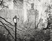 Urban Buildings Photo Prints - Central Park Lamppost in New York City Print by Lisa Russo