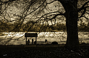 Landscapes Photo Prints - Central Park Lookout Print by Madeline Ellis