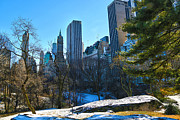 Central Park Photos - Central Park by Mitch Cat