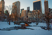 Michael Murphy - Central Park Mornings