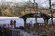 Landscapes Art - Central Park Photo Op 2 - NYC by Madeline Ellis