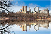 Central Park Prints - Central Park Reflections Print by Tim Reaves