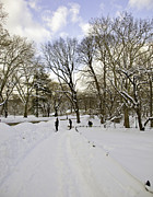 Jogging Prints - Central Park Snow Storm one day later Print by Madeline Ellis