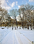 Jogging Prints - Central Park Snow Storm one day later2 Print by Madeline Ellis