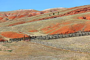Carol Groenen Framed Prints - Central Wyoming Hills with Fence Framed Print by Carol Groenen