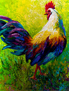 Animals Tapestries Textiles Posters - CEO Of The Ranch - Rooster Poster by Marion Rose