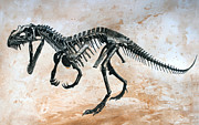 Dinosaurs Originals - Ceratosaurus skeleton by Harm  Plat