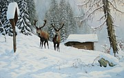 Elk Paintings - Cervi 2 by Roberto Bianchi