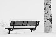 James BO  Insogna - Cesar Melai Love in The Snow BW