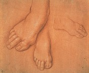 Treated Photos - Cesare Da Sesto, Study Of Feet, 15th by Everett