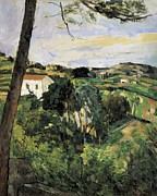 Exterior Pictures Posters - Cezanne, Paul 1839-1906. Pine-tree Poster by Everett