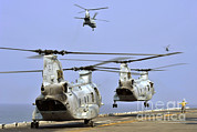 Featured Art - Ch-46e Sea Knight Helicopters Take by Stocktrek Images