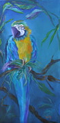 Macaw Painting Framed Prints - Cha Cha Framed Print by Lynn Rattray
