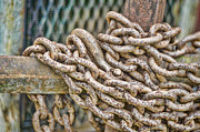 Linked Metal Prints - Chained Up Metal Print by Heather Applegate