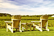 Winemaking Photo Posters - Chairs overlooking vineyard Poster by Elena Elisseeva