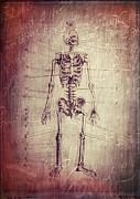 Edward Fielding - Chalkboard Skeleton