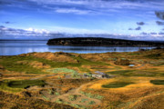 Golfers Framed Prints - Chambers Bay Golf Course Framed Print by David Patterson