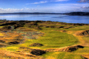 Golfers Framed Prints - Chambers Bay Golf Course II Framed Print by David Patterson