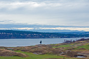 Challenging Framed Prints - Chambers Bay Golf Course Framed Print by Roger Reeves
