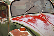Rusted Cars Prints - Chameleon  Print by Juls Adams
