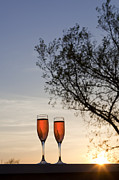 Glass Wall Posters - Champagne for Two Poster by Kay Pickens