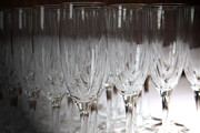 Champagne Glasses Photos - Champagne by Stephanie Leidolph