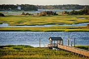 Kelly Nowak - Channel Marshes of Oak...