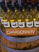 Chardonnay Originals - Chardonnay by Warren Thompson