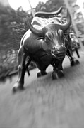 Green And White Framed Prints - Charging Bull 2 Framed Print by Tony Cordoza