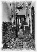 Courtyards Prints - Charleston Charm 2 bw Print by Mel Steinhauer