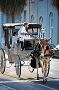 Horse And Buggy Prints - Charleston Horse and Carriage Print by Dana Klein