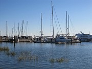Joetta Beauford - Charleston Marina