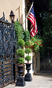 Scenic America Prints - Charleston Patriot Print by Skip Willits