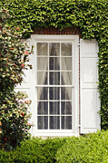 Southern Charm Prints - Charleston Plantation Window Print by Stephanie McDowell