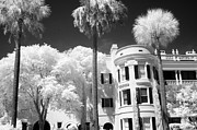 Infrared Art Prints Posters - Charleston South Carolina Black White Battery Park Poster by Kathy Fornal