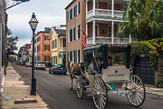 Carriage Horse Photos - Charleston South Carolina by Marc Crumpler