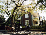 Carriages Posters - Charleston Victorian Homes and Carriage Ride  Poster by Kathy Fornal