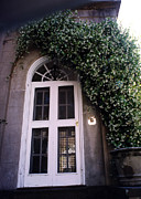 Photography Of Windows Posters - Charleston White Door With Green Ivy Arch Poster by Kathy Fornal