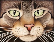Animal Shelter Drawings - Charlotte in Color by Kim Viola