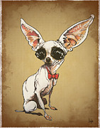 Chihuahua Framed Prints - Charming Chihuahua Framed Print by Canine Caricatures By John LaFree
