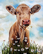 Bull Paintings - Charolais Lunch by Laura Carey