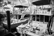 Angling Framed Prints - Charter Fishing Boats In The Old Seaport Of Key West Florida Usa Framed Print by Joe Fox