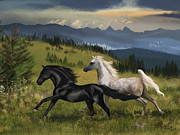 Friesian Posters - Chase The Dreams Poster by Kate Black