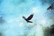 Blackbird Mixed Media Metal Prints - Chasing the Crow Metal Print by Peggy Collins