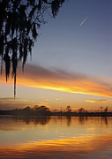 Waccamaw River Prints - Chasing the Twilight Print by Thomas Lovelace