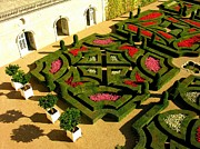 Anne Gordon - Chateau Villandry Garden