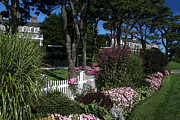 Charming Cottage Photos - Chatham on Cape Cod by John Rosa