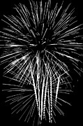 Pyrotechnics Prints - Chattanooga TN - Fireworks Print by Rosemary Williams
